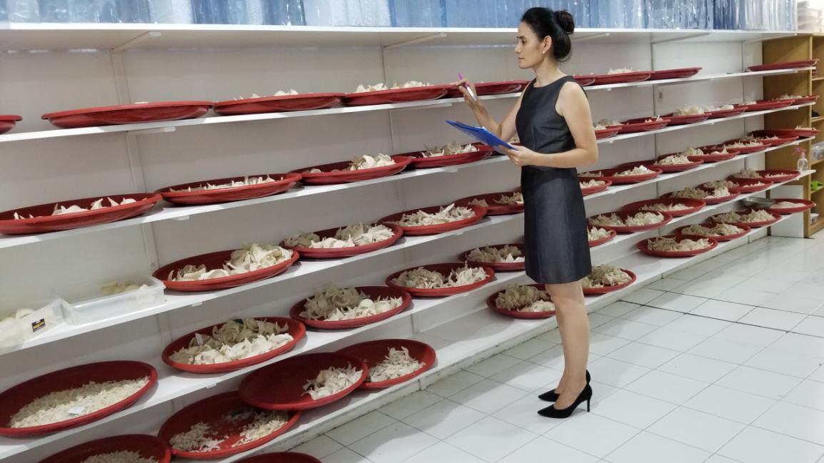 跨越行业鸿沟 中国燕窝行业才会蓬勃发展