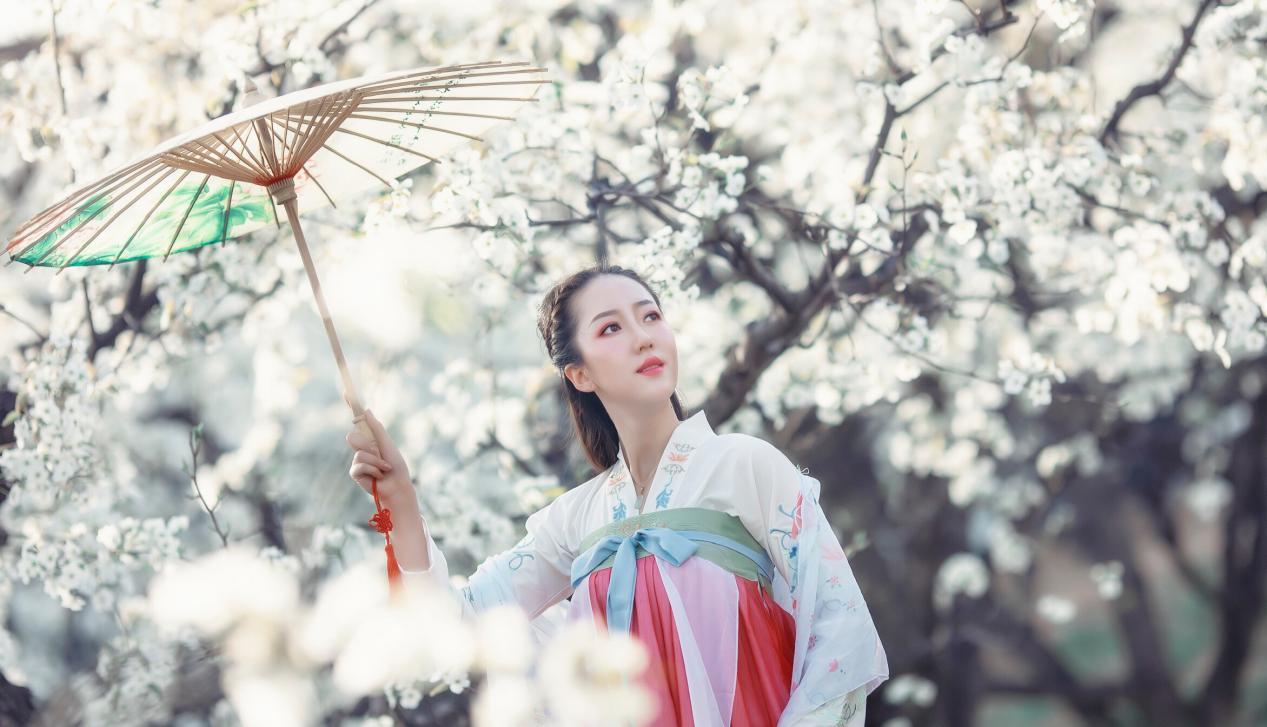 世界旅游小姐吕安琪为梨花节拍摄宣传大片宛若天仙