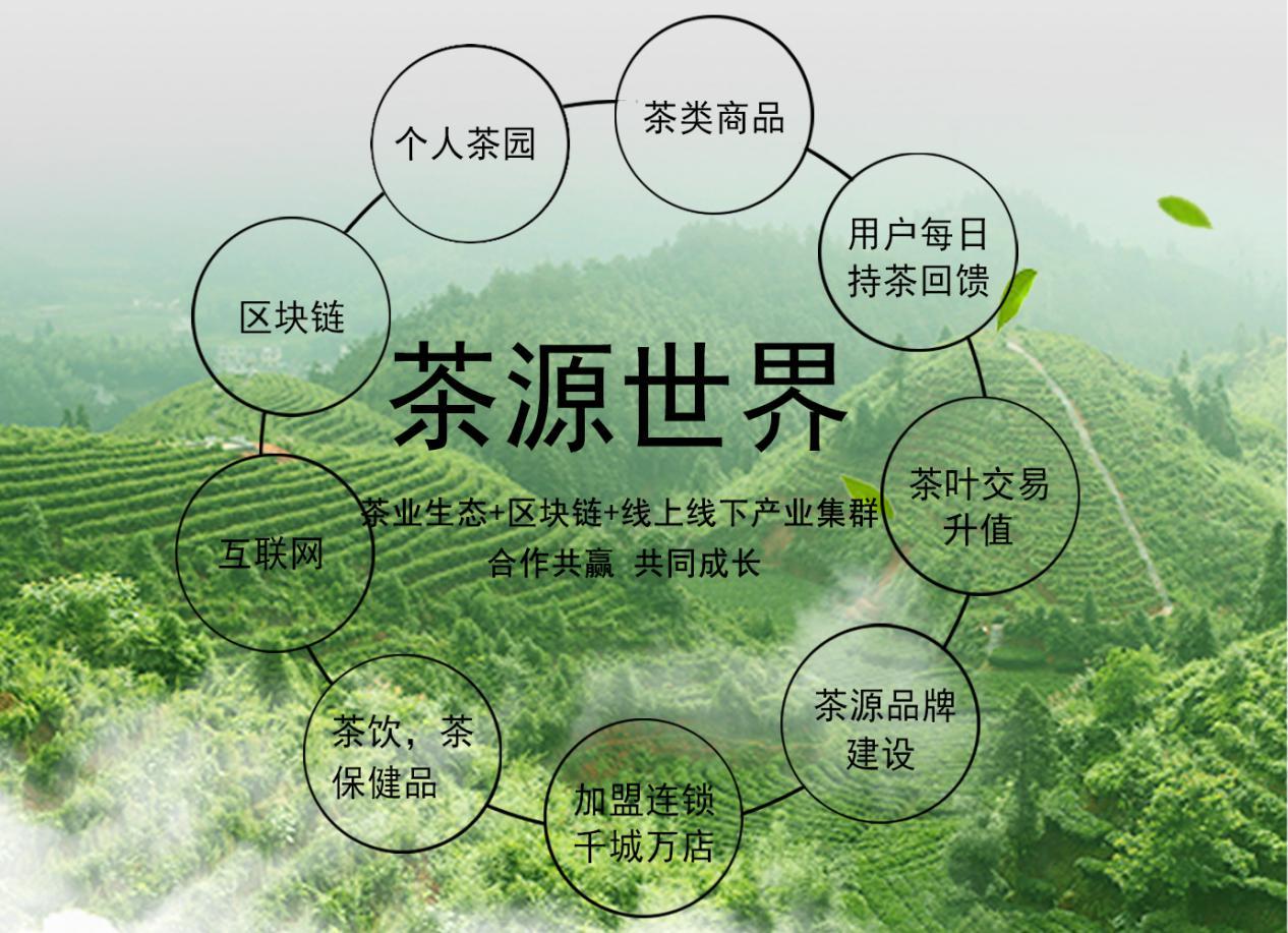 茶源世界是茶行业的伟大创新?
