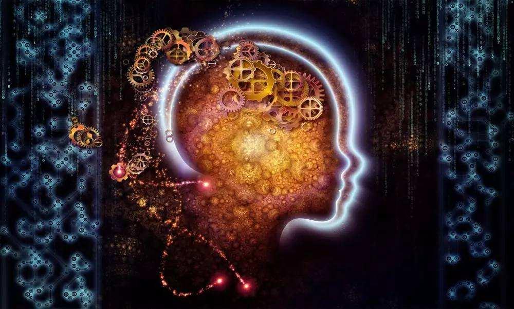 右脑开发加盟就选欧美思教育