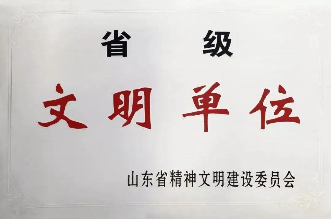 """双星集团荣获""""省级文明单位""""称号"""
