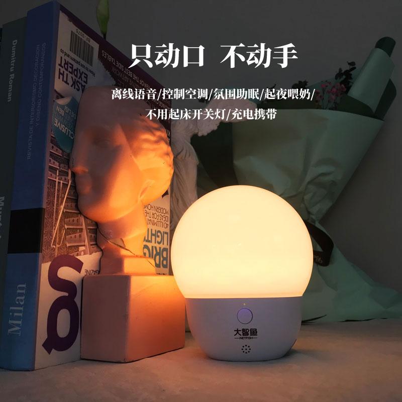 大智鱼iNetfish推出夜明珠智能灯,让夜晚不再寂寞